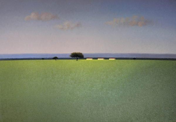 Campo Verde con Nubes